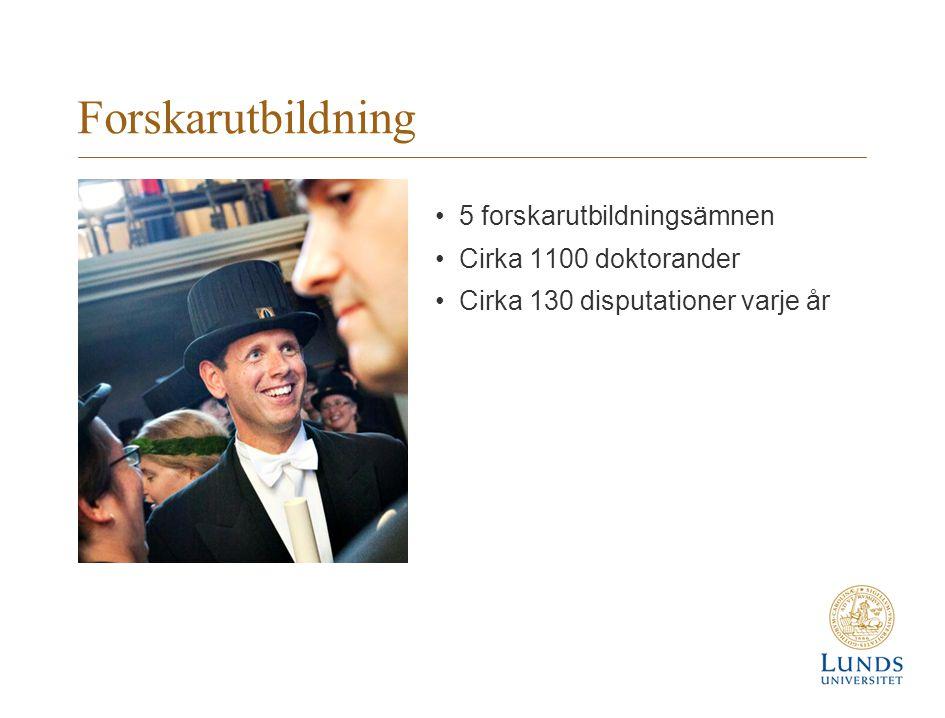 Forskarutbildning 5 forskarutbildningsämnen Cirka 1100 doktorander Cirka 130 disputationer varje år