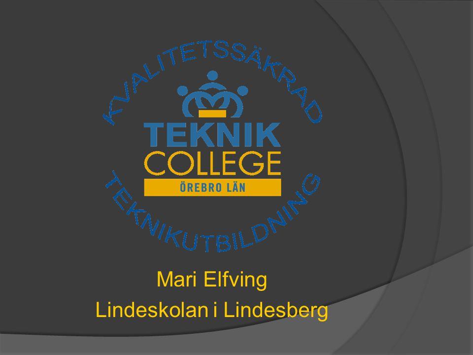Mari Elfving Lindeskolan i Lindesberg