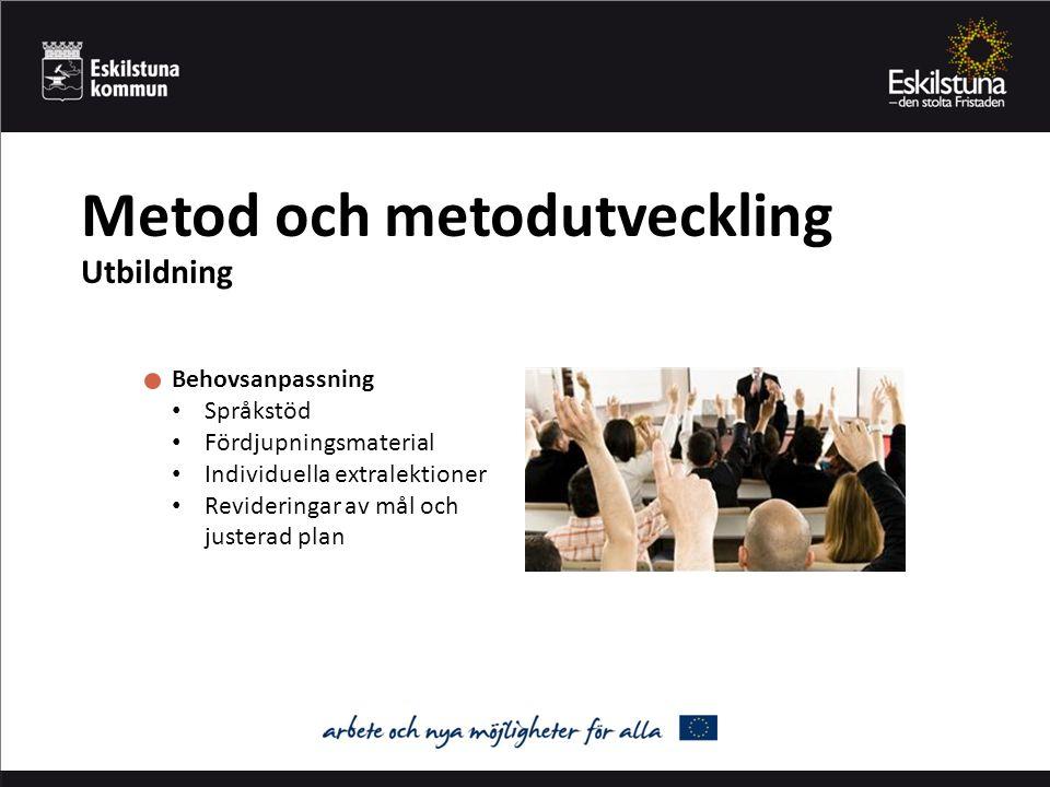 Metod och metodutveckling Utbildning Behovsanpassning Språkstöd Fördjupningsmaterial Individuella extralektioner Revideringar av mål och justerad plan