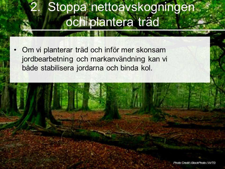 2. Stoppa nettoavskogningen och plantera träd Photo Credit: iStockPhoto / AVTG Om vi planterar träd och inför mer skonsam jordbearbetning och markanvä