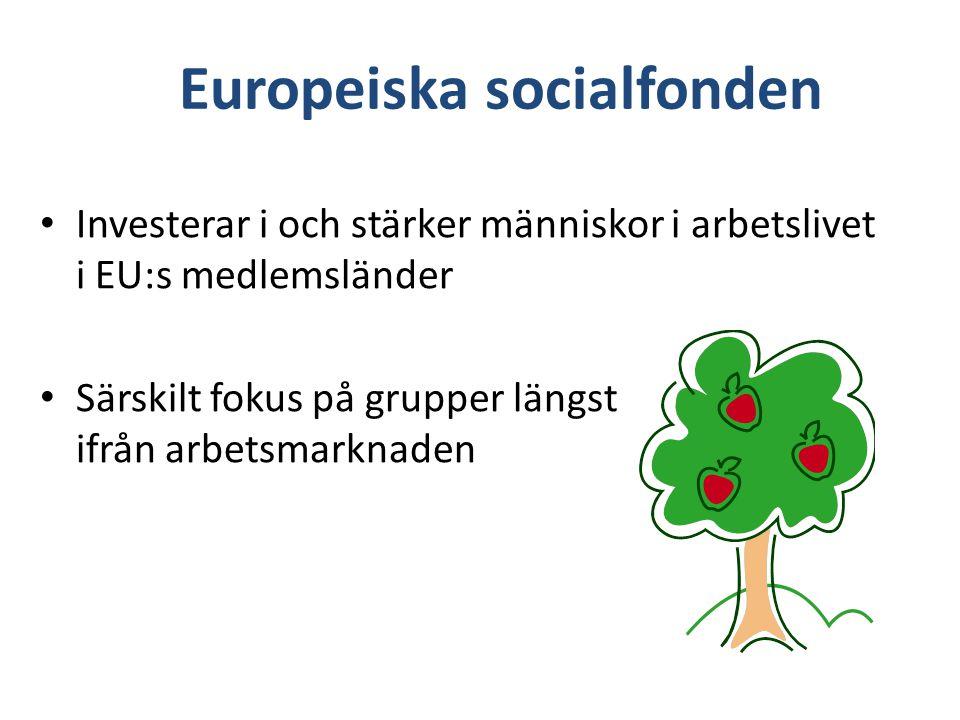 Investerar i och stärker människor i arbetslivet i EU:s medlemsländer Särskilt fokus på grupper längst ifrån arbetsmarknaden Europeiska socialfonden
