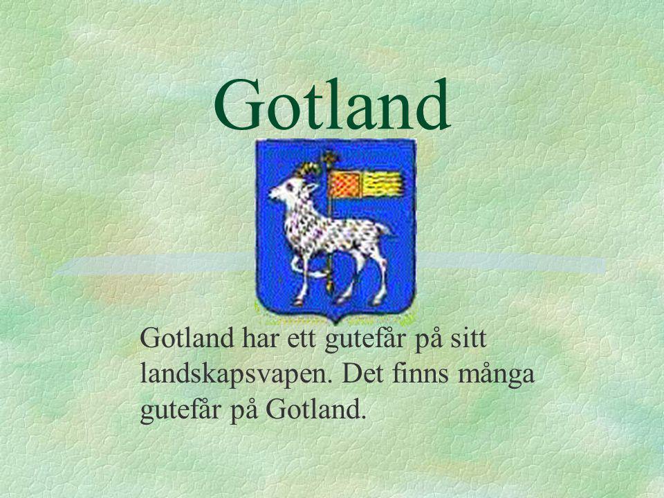 Gotland Gotland har ett gutefår på sitt landskapsvapen. Det finns många gutefår på Gotland.