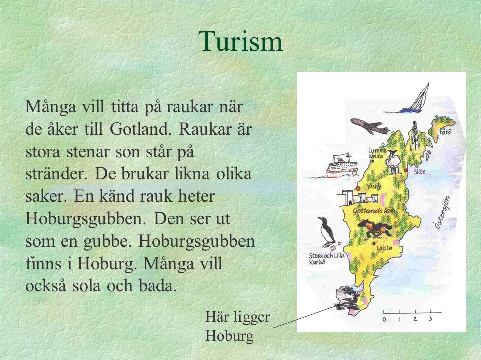 Turism Många vill titta på raukar när de åker till Gotland.