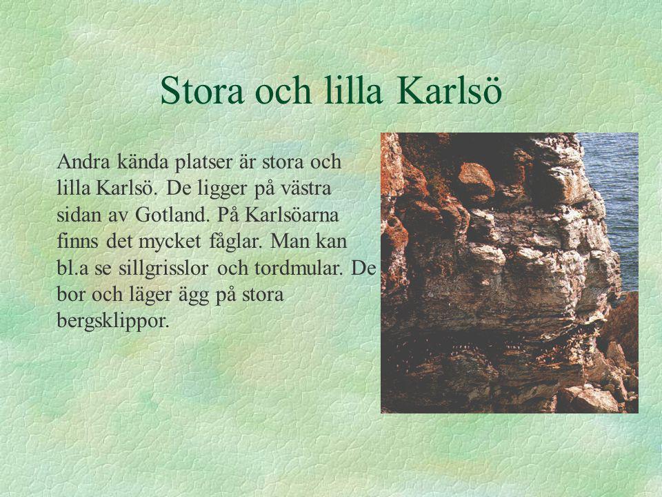 Stora och lilla Karlsö Andra kända platser är stora och lilla Karlsö.
