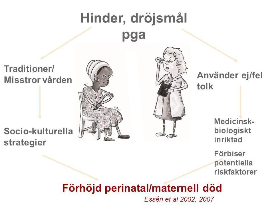 Hinder, dröjsmål pga Medicinsk- biologiskt inriktad Förbiser potentiella riskfaktorer Använder ej/fel tolk Traditioner/ Misstror vården Socio-kulturel