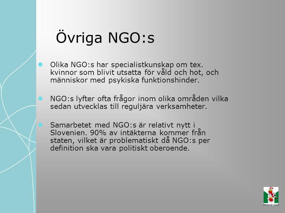 Övriga NGO:s Olika NGO:s har specialistkunskap om tex. kvinnor som blivit utsatta för våld och hot, och människor med psykiska funktionshinder. NGO:s