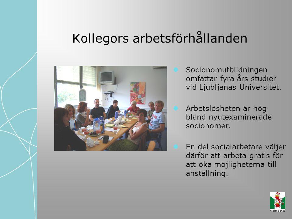 Kollegors arbetsförhållanden Socionomutbildningen omfattar fyra års studier vid Ljubljanas Universitet. Arbetslösheten är hög bland nyutexaminerade so