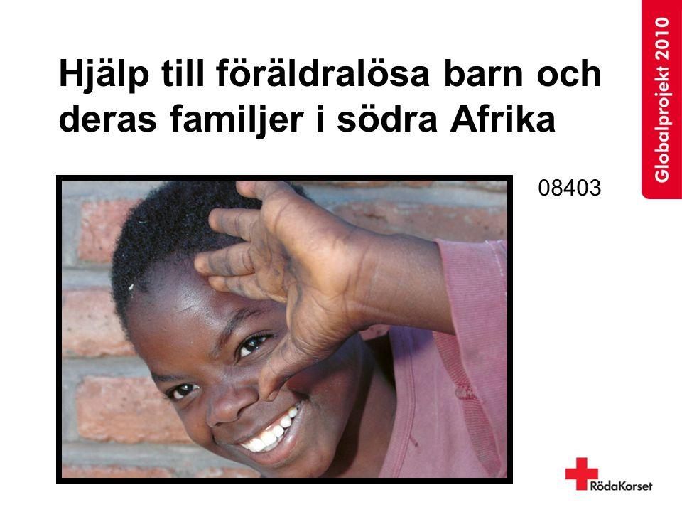 Hjälp till föräldralösa barn och deras familjer i södra Afrika 08403