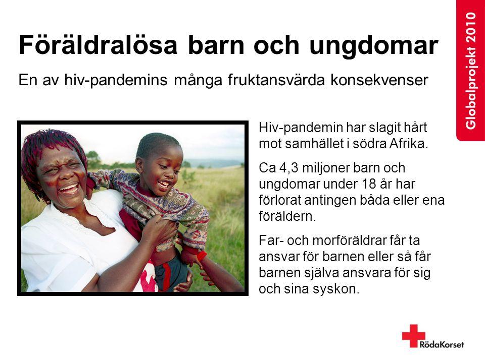 Föräldralösa barn och ungdomar En av hiv-pandemins många fruktansvärda konsekvenser Hiv-pandemin har slagit hårt mot samhället i södra Afrika. Ca 4,3