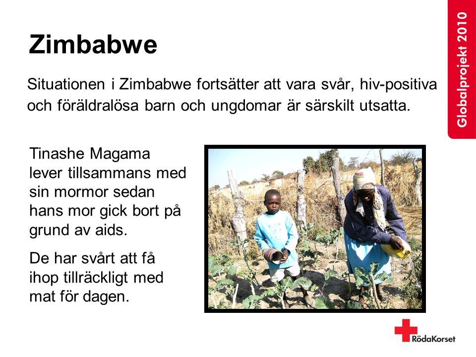 Zimbabwe Situationen i Zimbabwe fortsätter att vara svår, hiv-positiva och föräldralösa barn och ungdomar är särskilt utsatta. Tinashe Magama lever ti