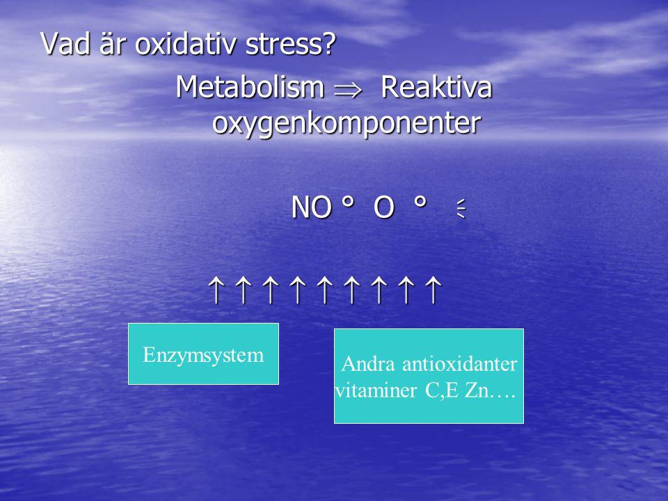 Vad är oxidativ stress? Metabolism  Reaktiva oxygenkomponenter NO ° O °  NO ° O °                    Enzymsystem Andra antioxidan