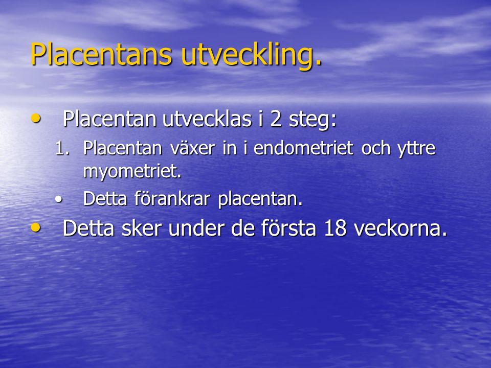 Placentans utveckling.