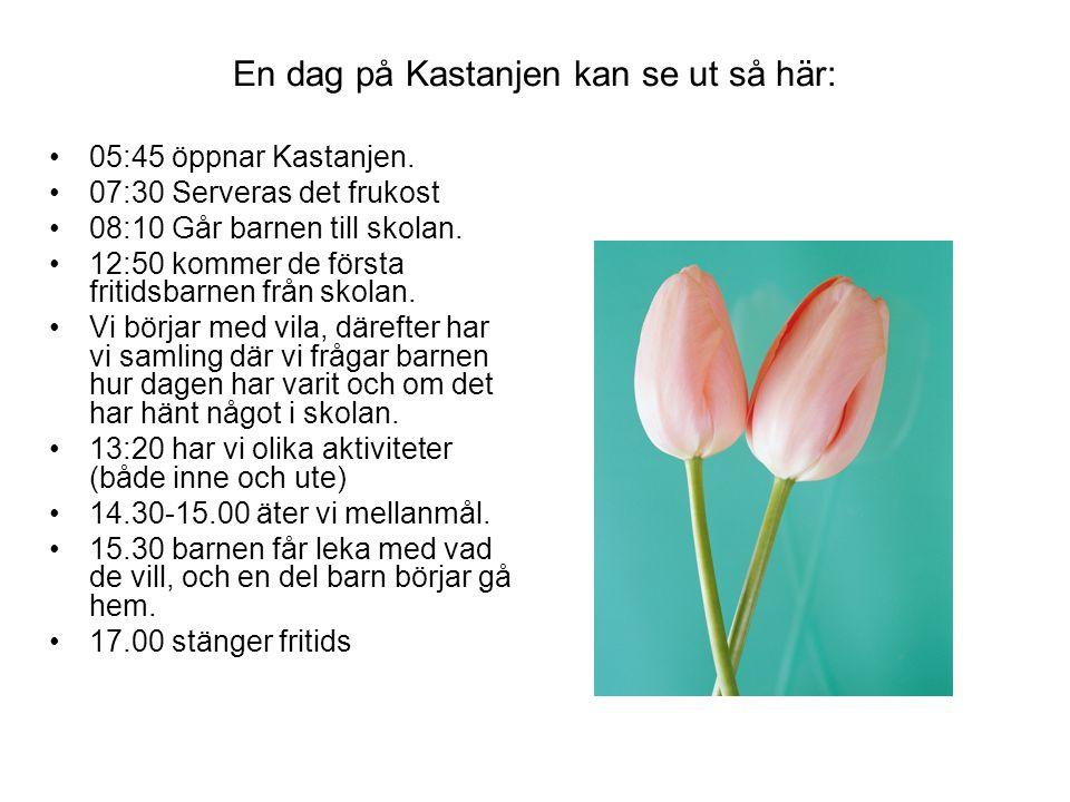 Vi som jobbar på Kastanjen Julia Gustavsson 63314 morgon Lilian Lindberg 64381 Ulrica Karlsson 64010 e.m.
