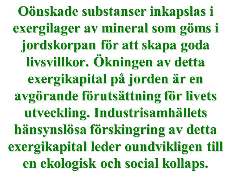 Oönskade substanser inkapslas i exergilager av mineral som göms i jordskorpan för att skapa goda livsvillkor. Ökningen av detta exergikapital på jorde