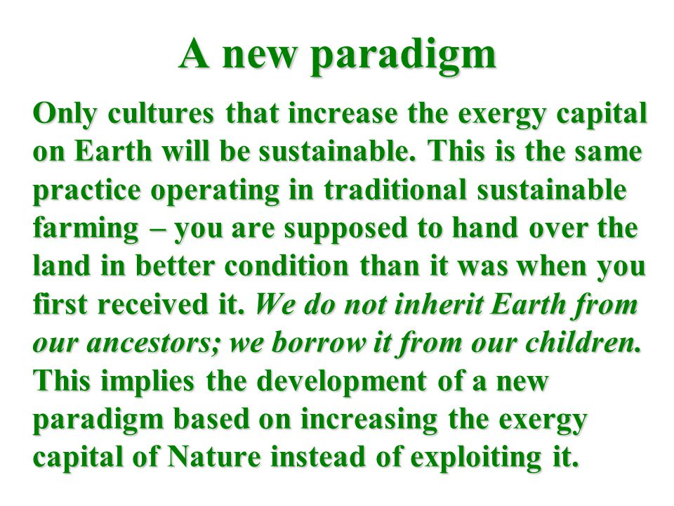 A new paradigm Only cultures that increase the exergy capital on Earth will be sustainable.
