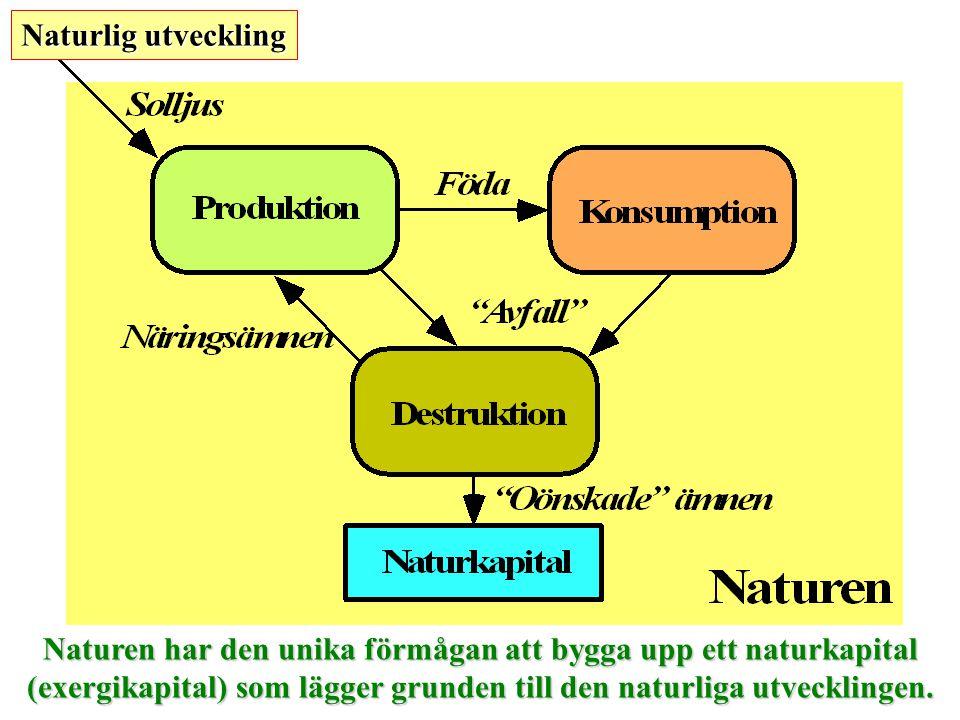 Naturen har den unika förmågan att bygga upp ett naturkapital (exergikapital) som lägger grunden till den naturliga utvecklingen. Naturlig utveckling