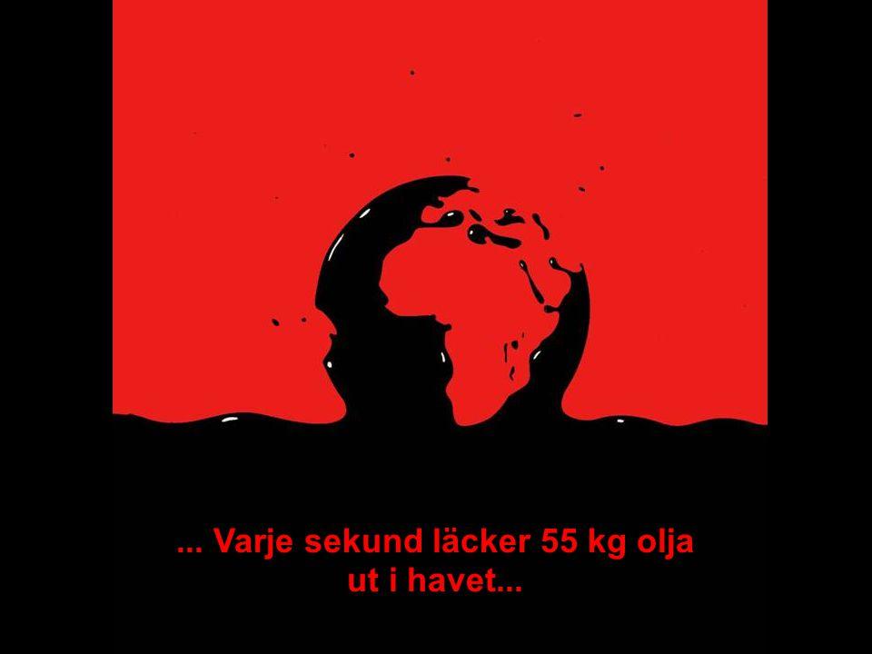 MEDVERKAN AV ALLMÄNHETEN www.transportlearning.net... Varje sekund läcker 55 kg olja ut i havet...