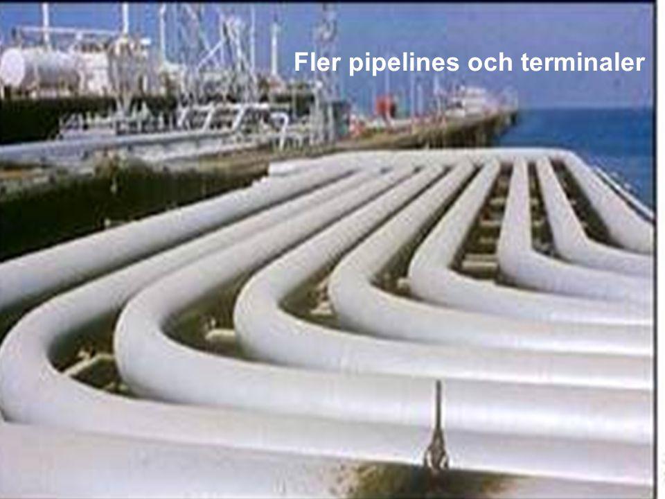 MEDVERKAN AV ALLMÄNHETEN www.transportlearning.net Fler pipelines och terminaler