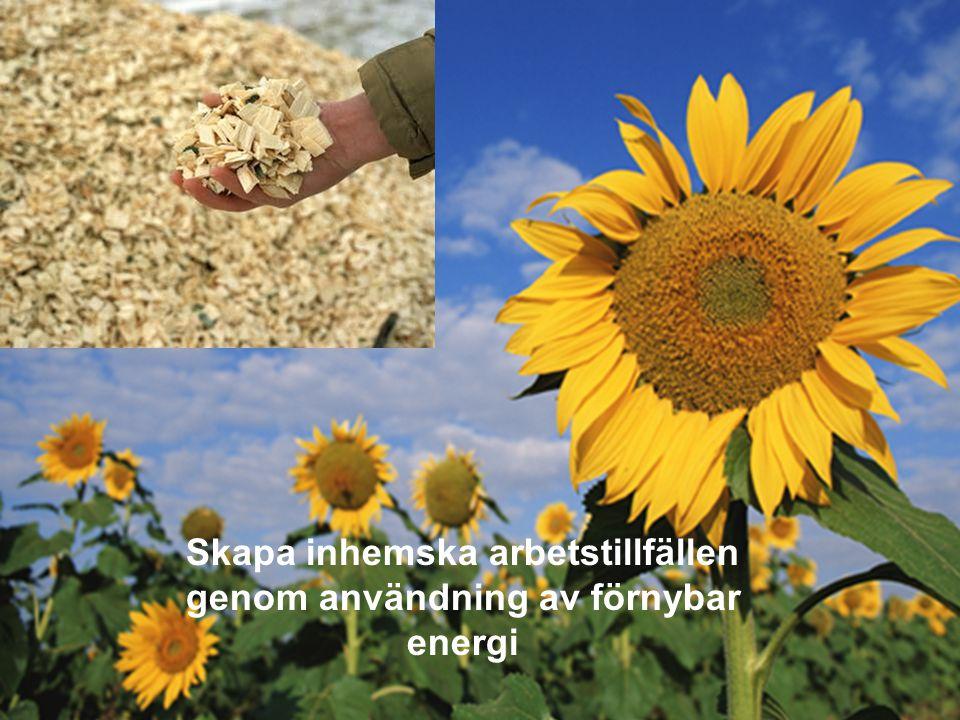 MEDVERKAN AV ALLMÄNHETEN www.transportlearning.net Skapa inhemska arbetstillfällen genom användning av förnybar energi