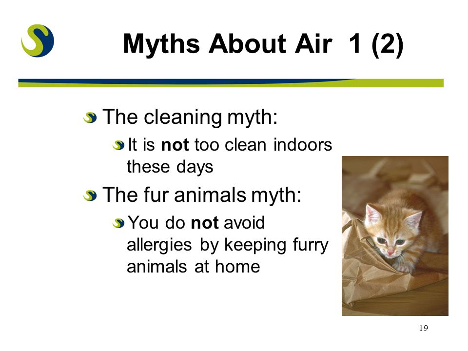 19 Myths About Air 1 (2) The cleaning myth: It is not too clean indoors these days The fur animals myth: You do not avoid allergies by keeping furry animals at home