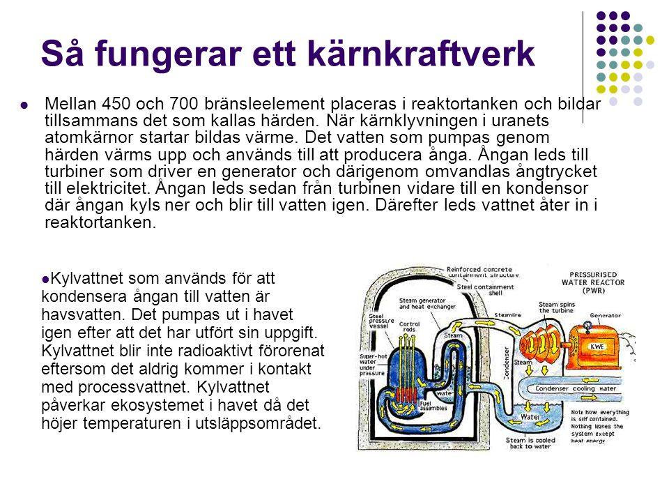 Så fungerar ett kärnkraftverk Mellan 450 och 700 bränsleelement placeras i reaktortanken och bildar tillsammans det som kallas härden. När kärnklyvnin