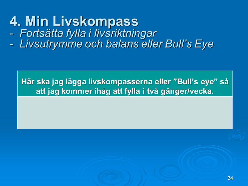 """34 4. Min Livskompass - Fortsätta fylla i livsriktningar - Livsutrymme och balans eller Bull's Eye Här ska jag lägga livskompasserna eller """"Bull's eye"""