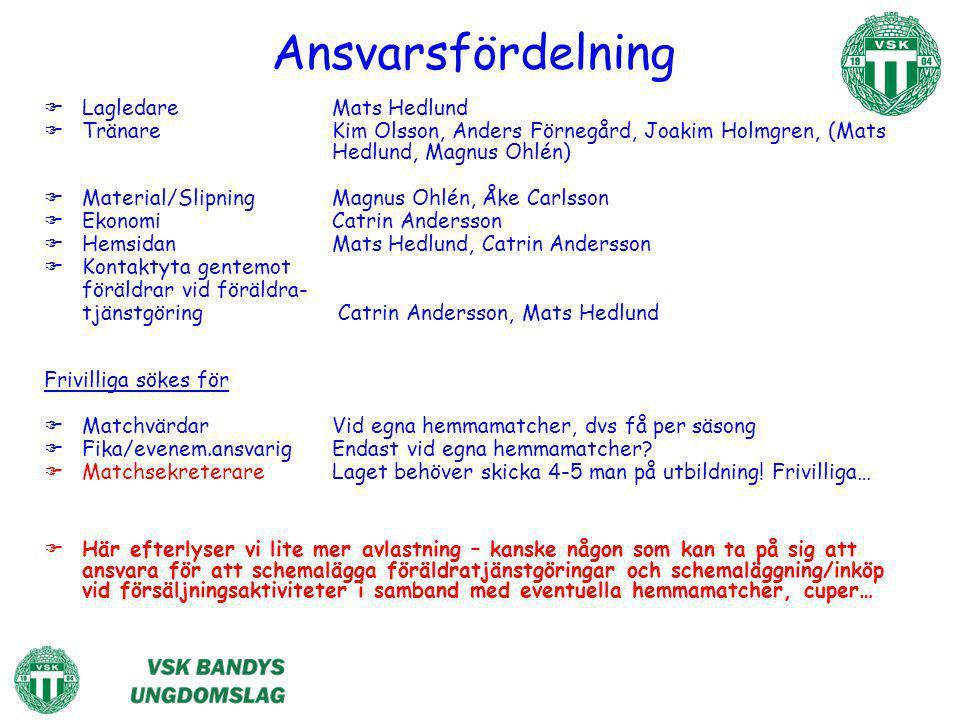 Ansvarsfördelning  LagledareMats Hedlund  TränareKim Olsson, Anders Förnegård, Joakim Holmgren, (Mats Hedlund, Magnus Ohlén)  Material/SlipningMagn