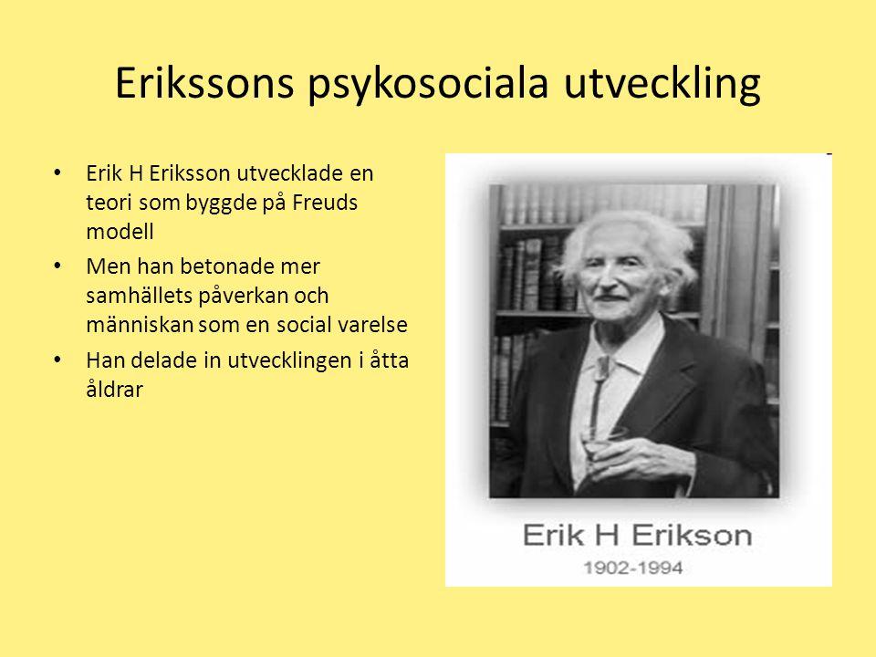 Erikssons psykosociala utveckling Erik H Eriksson utvecklade en teori som byggde på Freuds modell Men han betonade mer samhällets påverkan och människan som en social varelse Han delade in utvecklingen i åtta åldrar