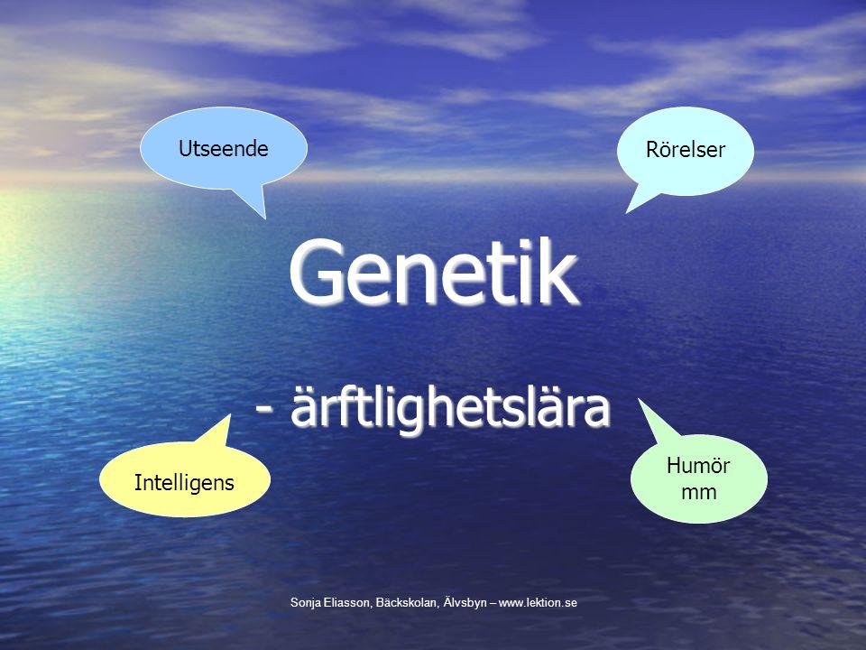 Gener - arvsanlag Ordningsföljden av kvävebaserna.