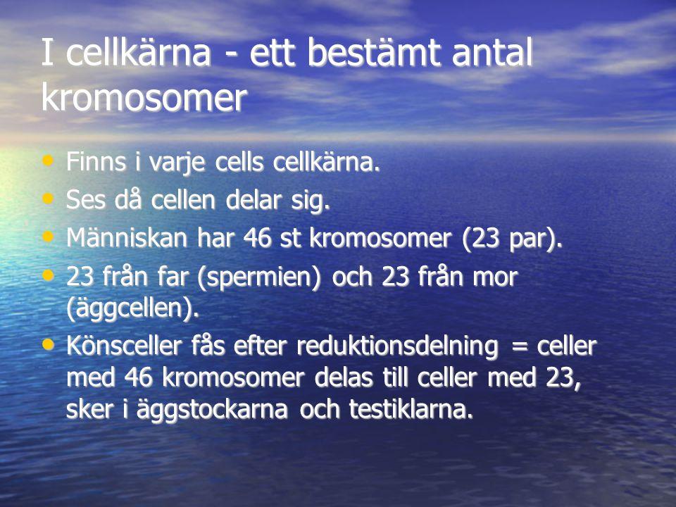 D.Kloning Två individer med exakt samma gen- uppsättning kallas kloner.