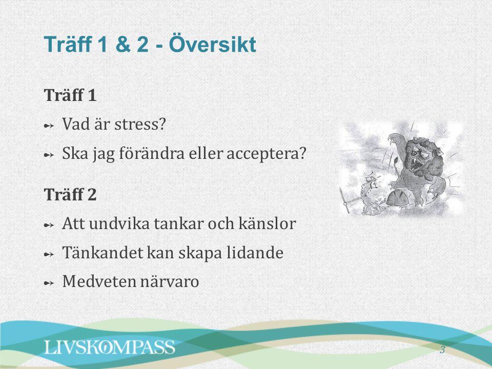 3 Träff 1 & 2 - Översikt Träff 1 ➻ ➻ Vad är stress? ➻ ➻ Ska jag förändra eller acceptera? Träff 2 ➻ ➻ Att undvika tankar och känslor ➻ ➻ Tänkandet kan