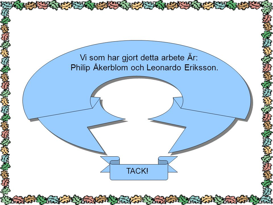 Vi som har gjort detta arbete Är: Philip Åkerblom och Leonardo Eriksson. TACK!