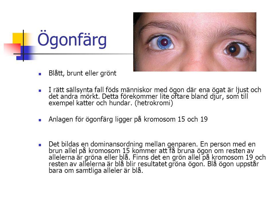 Ögonfärg Blått, brunt eller grönt I rätt sällsynta fall föds människor med ögon där ena ögat är ljust och det andra mörkt. Detta förekommer lite oftar