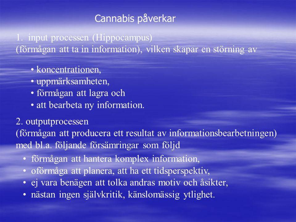 Cannabis påverkar 1. input processen (Hippocampus) (förmågan att ta in information), vilken skapar en störning av koncentrationen, uppmärksamheten, fö