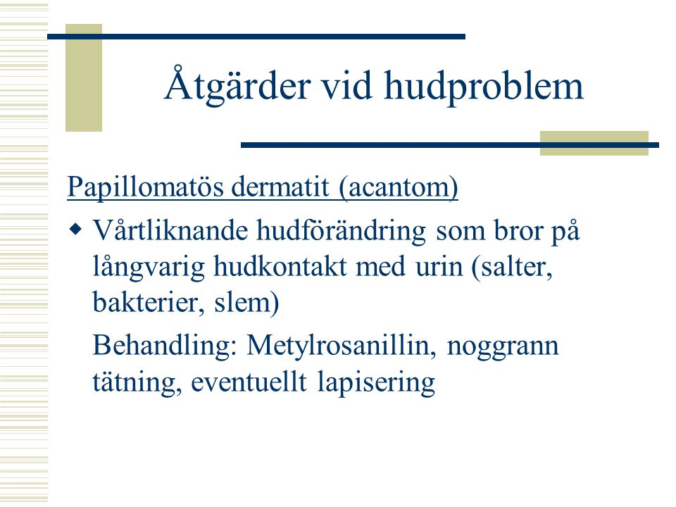 Åtgärder vid hudproblem Papillomatös dermatit (acantom)  Vårtliknande hudförändring som bror på långvarig hudkontakt med urin (salter, bakterier, slem) Behandling: Metylrosanillin, noggrann tätning, eventuellt lapisering