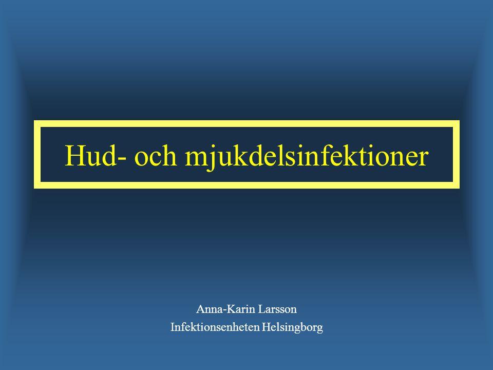 Hud- och mjukdelsinfektioner Anna-Karin Larsson Infektionsenheten Helsingborg