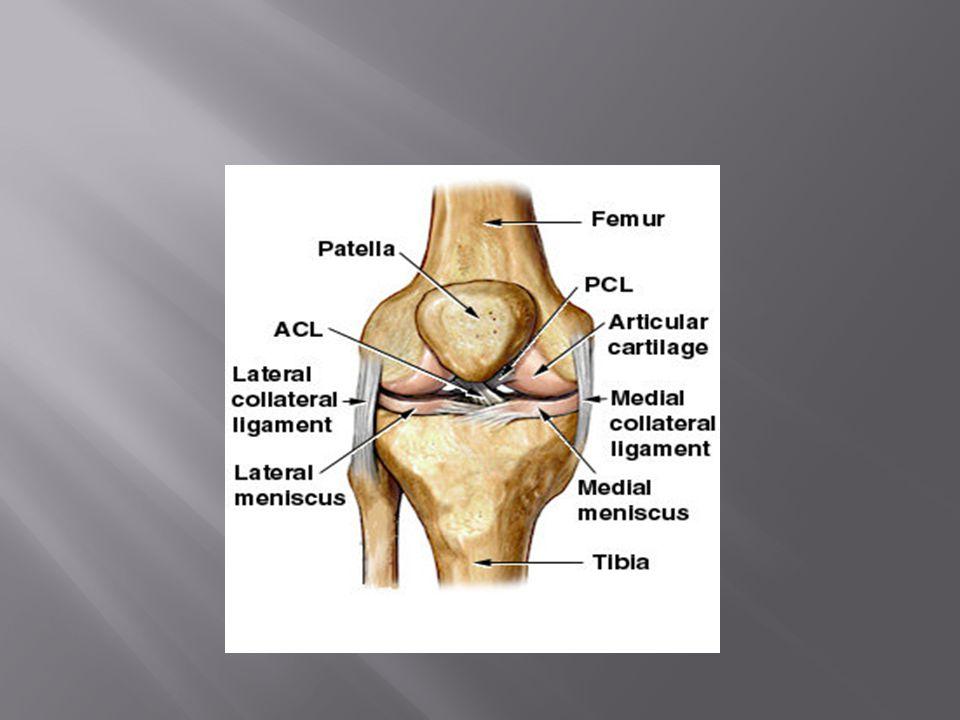  Uppstår vid rotations- eller översträckningsvåld mot knäleden vid kontaktidrotter som exempelvis fotboll, handboll eller ishockey.