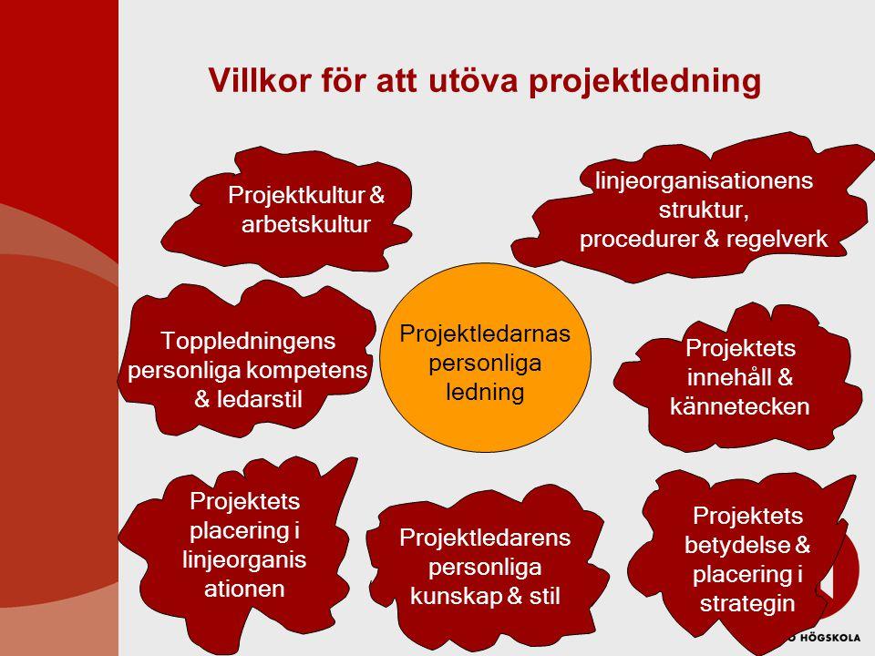 Villkor för att utöva projektledning Projektledarnas personliga ledning Projektkultur & arbetskultur Toppledningens personliga kompetens & ledarstil P