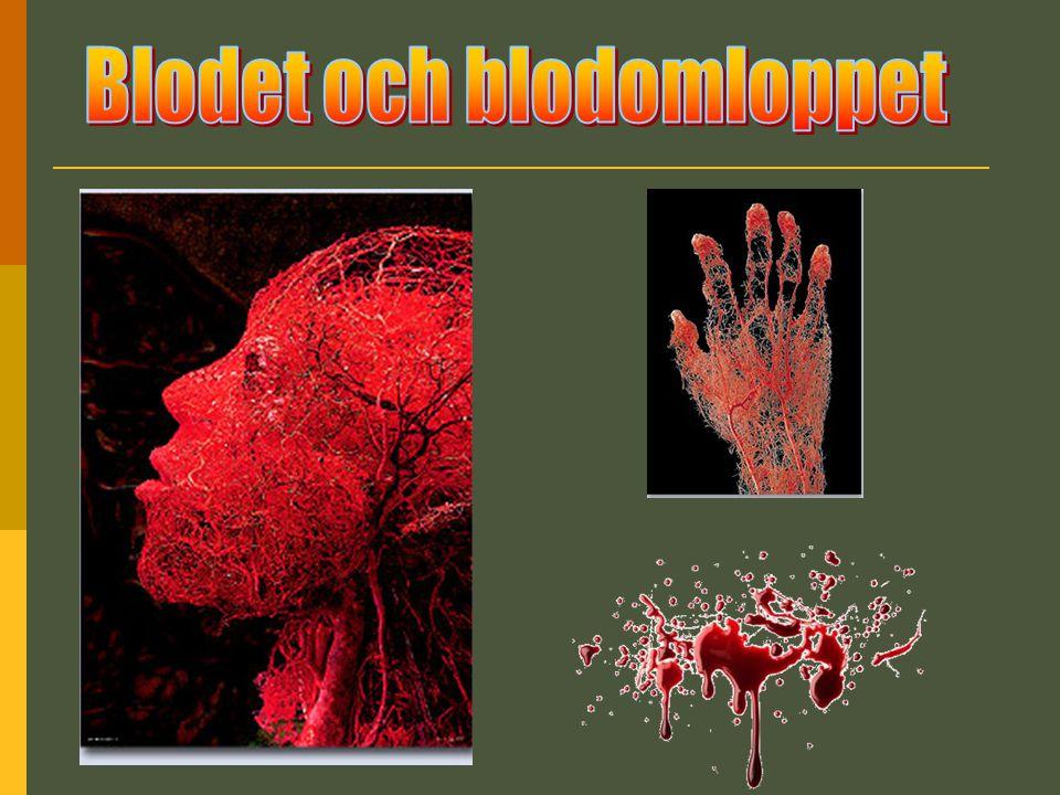 Blodet Blodets uppgifter i kroppen: Transportera syre och koldioxid Skicka runt näringsämnen från tarmarna Ta hand om cellernas avfall Skicka runt hormoner i kroppen Försvara kroppen mot infektioner Hålla rätt temp på kroppen