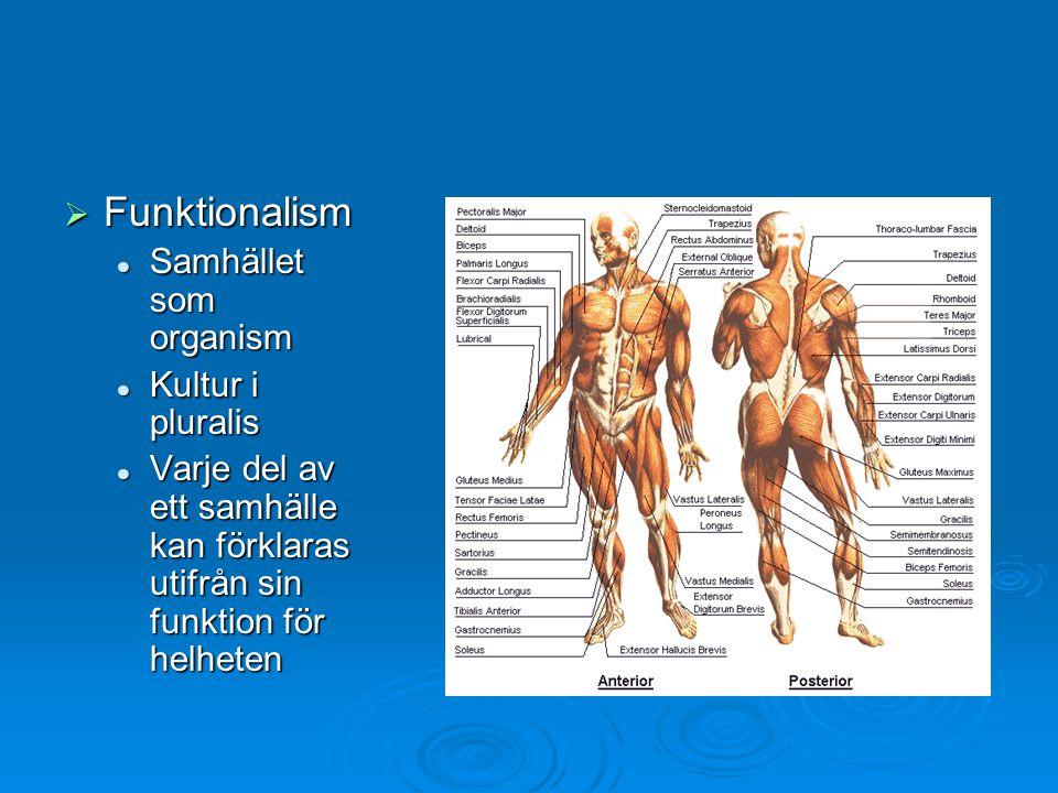  Funktionalism Samhället som organism Samhället som organism Kultur i pluralis Kultur i pluralis Varje del av ett samhälle kan förklaras utifrån sin