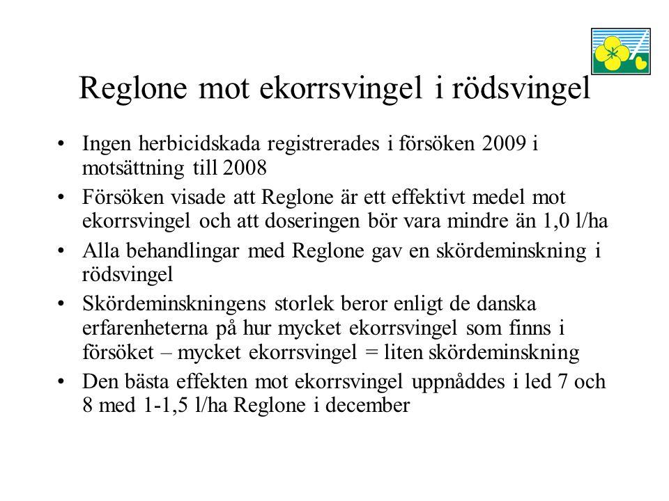 Reglone mot ekorrsvingel i rödsvingel Ingen herbicidskada registrerades i försöken 2009 i motsättning till 2008 Försöken visade att Reglone är ett eff