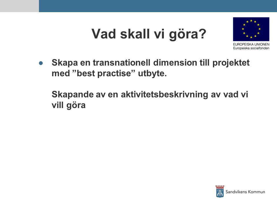 """Vad skall vi göra? Skapa en transnationell dimension till projektet med """"best practise"""" utbyte. Skapande av en aktivitetsbeskrivning av vad vi vill gö"""