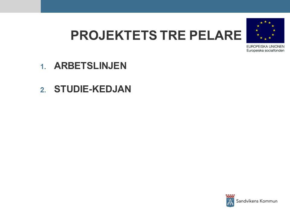 PROJEKTETS TRE PELARE 1. ARBETSLINJEN 2. STUDIE-KEDJAN