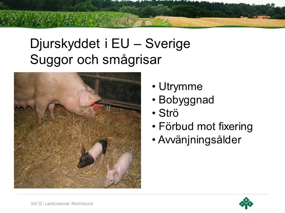 Sid 12 | Lantbrukarnas Riksförbund Djurskyddet i EU – Sverige Suggor och smågrisar Utrymme Bobyggnad Strö Förbud mot fixering Avvänjningsålder