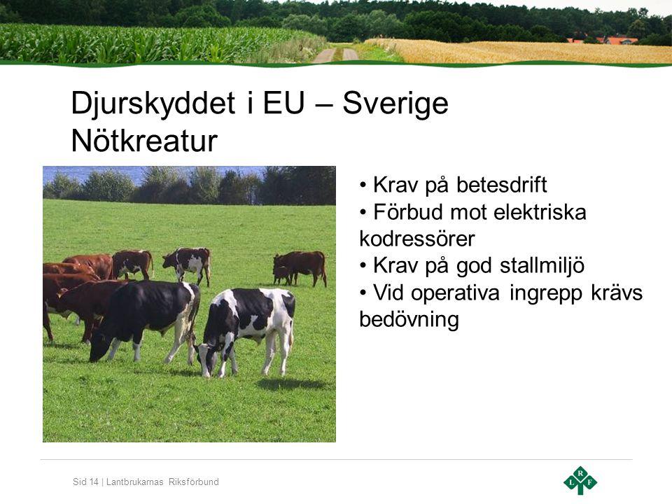 Sid 14 | Lantbrukarnas Riksförbund Djurskyddet i EU – Sverige Nötkreatur Krav på betesdrift Förbud mot elektriska kodressörer Krav på god stallmiljö V