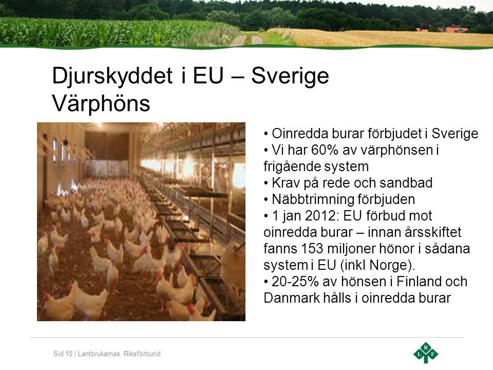 Sid 15 | Lantbrukarnas Riksförbund Djurskyddet i EU – Sverige Värphöns Oinredda burar förbjudet i Sverige Vi har 60% av värphönsen i frigående system