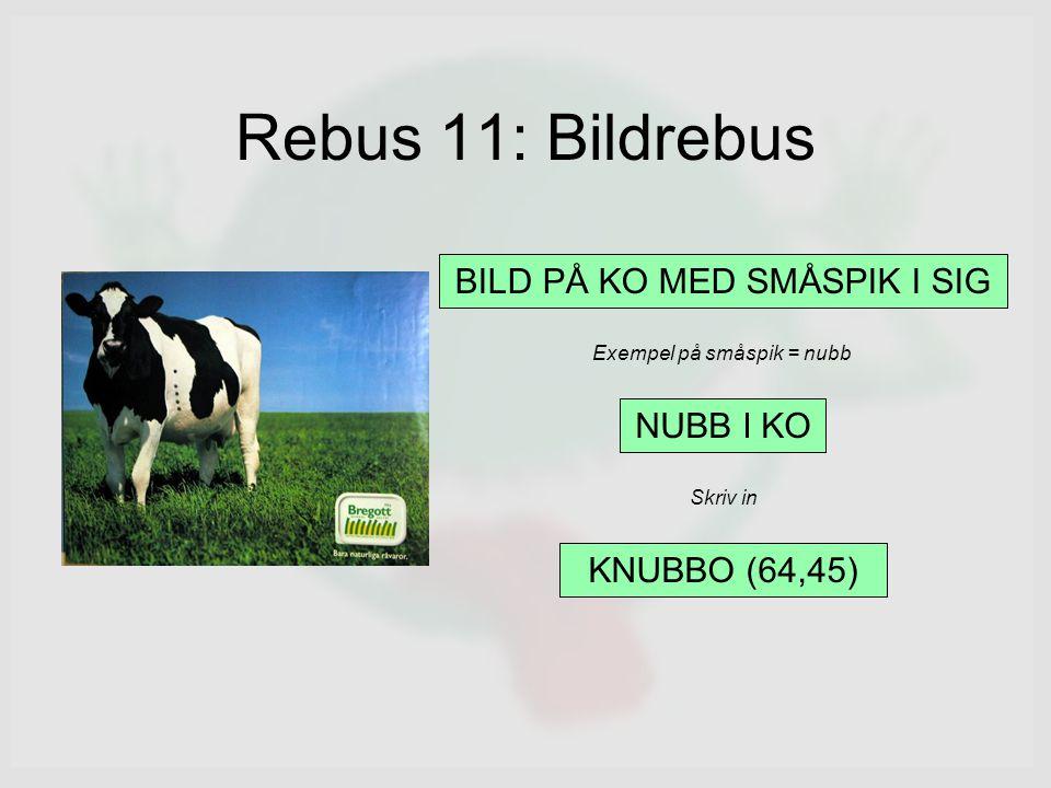 Rebus 11: Bildrebus NUBB I KO KNUBBO (64,45) Exempel på småspik = nubb Skriv in BILD PÅ KO MED SMÅSPIK I SIG