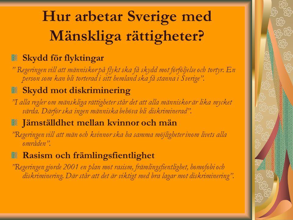"""Hur arbetar Sverige med Mänskliga rättigheter? Skydd för flyktingar """" Regeringen vill att människor på flykt ska få skydd mot förföljelse och tortyr."""