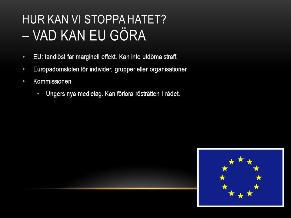 HUR KAN VI STOPPA HATET? – VAD KAN EU GÖRA EU: tandlöst får marginell effekt. Kan inte utdöma straff. Europadomstolen för individer, grupper eller org