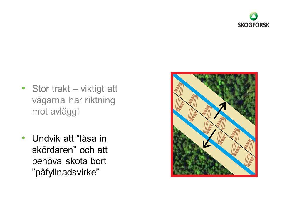 """Stor trakt – viktigt att vägarna har riktning mot avlägg! Undvik att """"låsa in skördaren"""" och att behöva skota bort """"påfyllnadsvirke"""""""